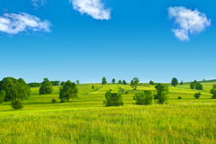 Sky and Valley. Landscape of clear blue sky and green valley with random trees Stock Photography