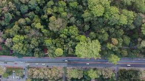 Sky view of forest road with cars.  stock video