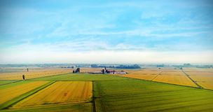 Sky view of yellow and green grass field. Under blue sky Royalty Free Stock Photos