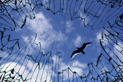 Sky viewed from shattered window glass. Symbol of longing for freedom Royalty Free Stock Photos