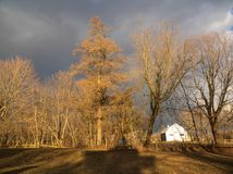 The sky was threatening. At the end of the day on April 4, 2018, the sun came out and the trees became orange. The sky was overcast and became black. It was an stock photography