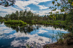 Sky in the water. Water like a mirror for sky. It shows all all details on the surface royalty free stock photo