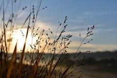 Sky, Water, Morning, Atmosphere stock image