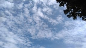 Sky. White clouds and blue sky Stock Photography