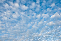 Sky with white couds Stock Photos