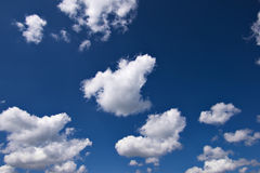 Sky with white couds Stock Image