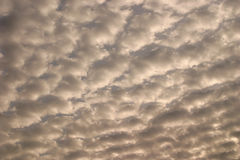 Sky with white puffy clouds Royalty Free Stock Image