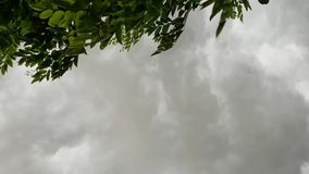 Sky in windy rainy day. Dark sky in cloudy windy rainy day with Leaves on the top left of the frame stock video footage