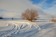 Sky and winter. Winter landscape on the reservoir,lake Stock Photography