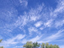 The sky. Wonderful feathers of the Heavens in the world Royalty Free Stock Photography