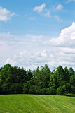 Sky and wooded area. Summer landscape of forest and field with bright blue sky in KY Royalty Free Stock Photos