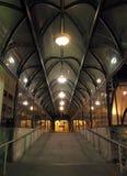 Skybridge nachts lizenzfreie stockfotos