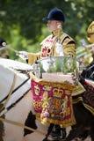 skydd den london kunglig person Arkivbild
