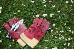 Skyddande handskar och beskärasax i gräset för att arbeta i trädgården Royaltyfri Foto