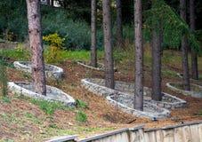 Skyddande konkret runt staket runt om träden Royaltyfria Foton