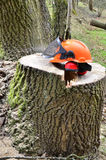 Skyddande säkerhetshjälm för skogsbruk Arkivfoto