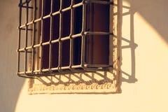 Skyddande skyddsgaller för härlig metall på fönstret arkivbild