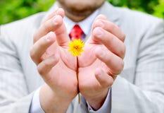 skyddande yellow för blommaholdingman Royaltyfria Foton