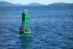 Skyddsremsor som överst vilar av en marin- markör Royaltyfri Foto