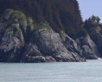 Skyddsremsor som vilar på den ojämna Alaska shorelinen Royaltyfri Foto