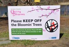 Skyddsskylt för körsbärsröda blomningar fotografering för bildbyråer