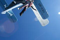 skydive lizenzfreie stockfotos