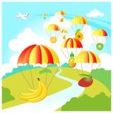 Skydive fruit Stock Foto's