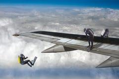 skydiver Royaltyfria Bilder