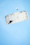 Skydiver in de hemel Stock Foto's