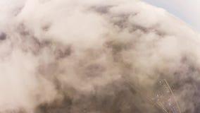 Skydiver, der in bewölkten Himmel mit Fallschirm abspringt Extremer Sport schwerpunkt flug höhe stock video footage