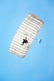 Skydiver in the sky Stock Image