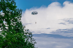 Skydiver. In the summer sky Stock Photos