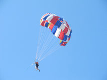 Skydiver. Theme: parasailing in the sky Stock Photos