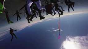 Skydivers make big formation in blue sky. Height. Extreme sport. Team. Flight. Sunny day stock video
