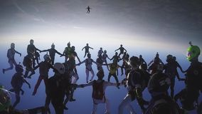 Skydivers team in uniform falling in sky on sunset. Create big formation. Sport. Falling stock video footage