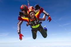 Skydiving照片。纵排。 库存照片