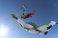 Skydiving照片 库存照片