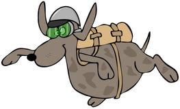 Skydiving狗 免版税库存图片