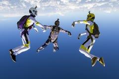 skydiving的照片 图库摄影