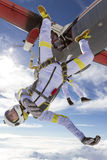 skydiving的照片 库存照片