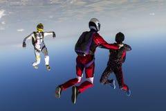 skydiving的照片 免版税库存照片