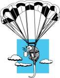 Skydiving负鼠 库存照片