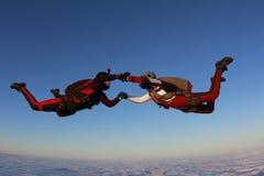 skydiving Dos skydivers están volando en el cielo de la puesta del sol fotografía de archivo libre de regalías