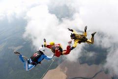 skydiving Dwa instruktora trenują ucznia latać obraz royalty free