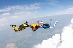skydiving Dwa instruktora trenują ucznia latać zdjęcie royalty free