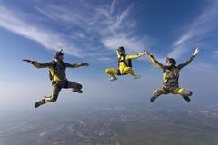 Skydiving foto. Arkivfoto
