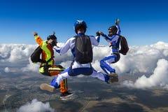 Skydiving fotografia. obrazy royalty free