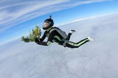 skydiving Mädchen mit Blumen fällt in den Himmel lizenzfreie stockfotos