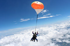 Skydiving photo. Tandem jump over the clouds royalty free stock photo