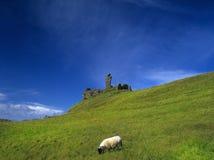 Skye Stock Images